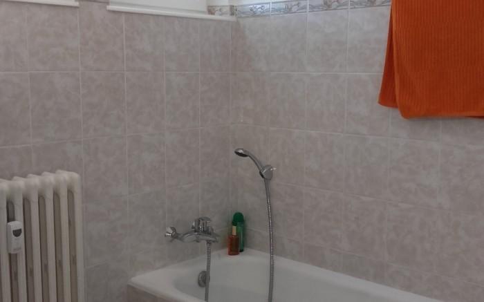 salle de bains 3,91m2